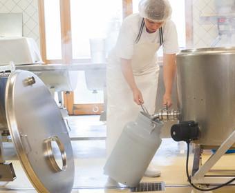 Herstellung von Mozzarella aus Bueffelmilch