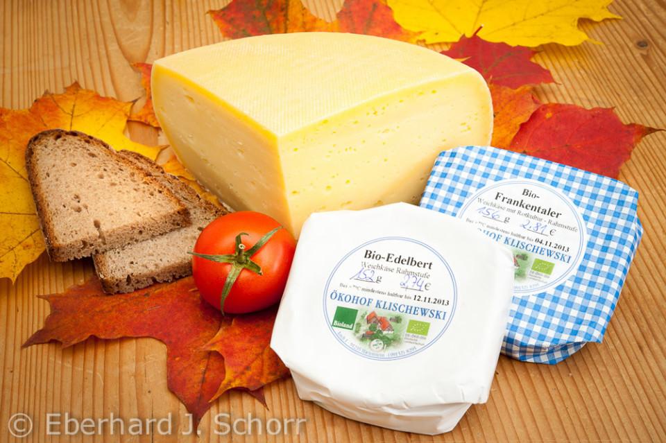 eine Auswahl von Käsesorten vom Ökohof Klischewski