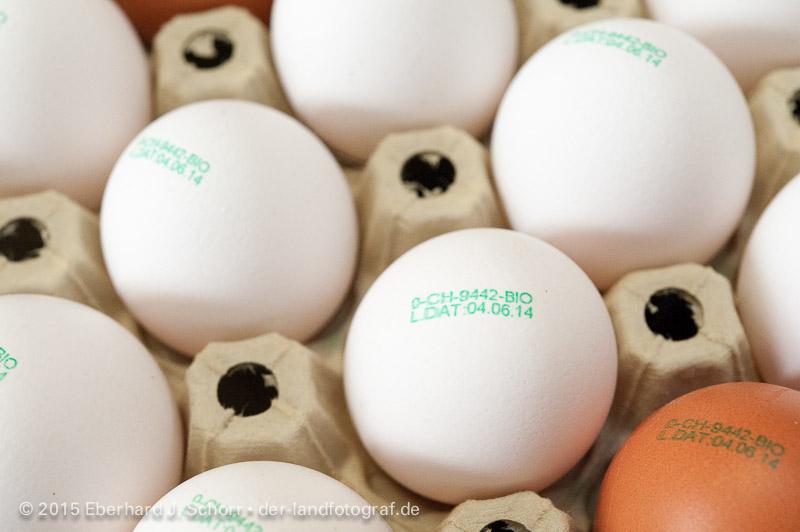 Mit der Hofnummer bedruckte Eier