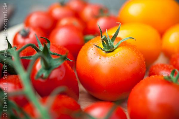 verschiedene Tomatensorten vom Hofladen Landgut Pretschen