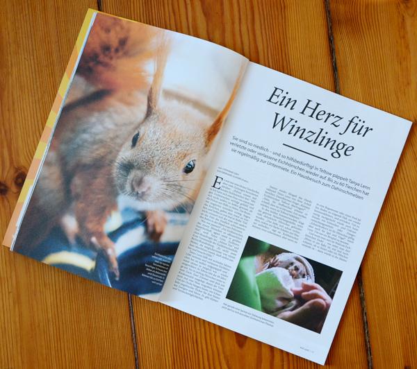 """Doppelseite des Artikels """"Ein Herz für Winzlinge"""" über die Eichhörnchen-Hilfe Berlin-Brandenburg"""