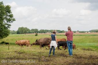 Der Biobauer Dr. Wilhelm Schäkel weist eine Teilnehmerin ein. Sie soll eine Kuh dazu bewegen in eine bestimmte Richtung zu laufen.
