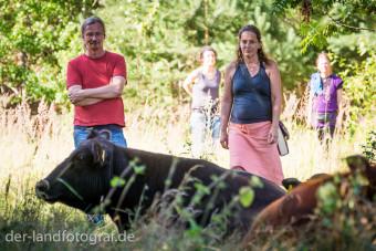 Kuh und Mensch
