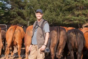 Der Fotograf Eberhard Schorr vor seinen Modellen, den Kühen