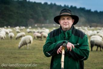 Schäfer Jürgen Körner auf der Weide bei seinen Schafen