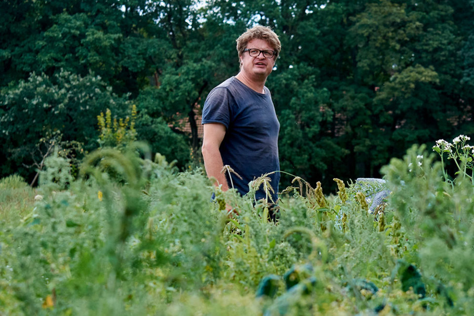 Biobauer Christian Heymann auf dem Feld