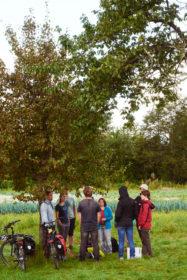 Die Helfer legen im Schatten eines Baumes eine Pause ein